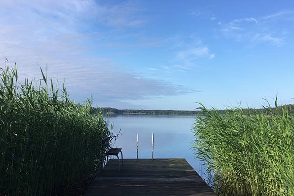 morningswim_1
